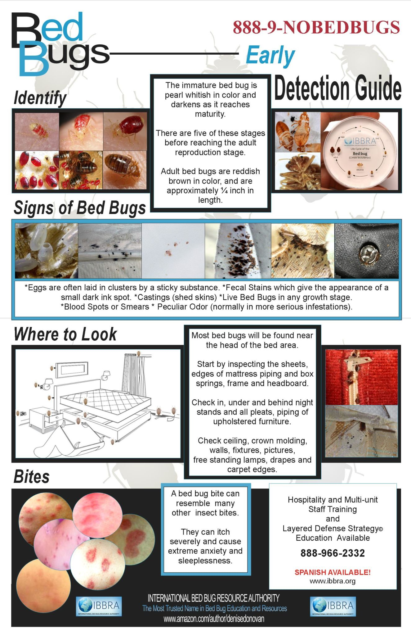 BED BUG POSTER IBBRA