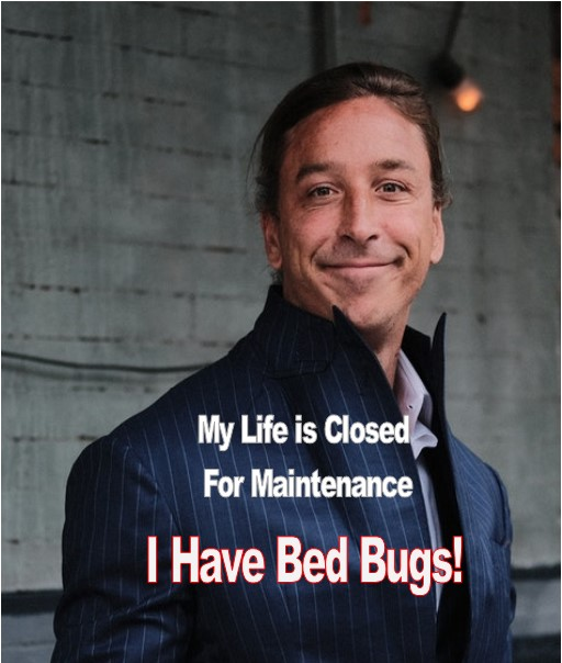 My Life is Closed for Maintenance I Have Bed Bugs!