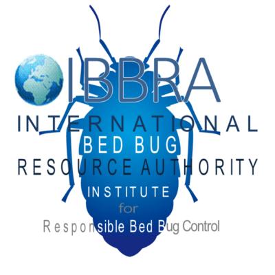 Bed Bug Life Cycle Ibbra