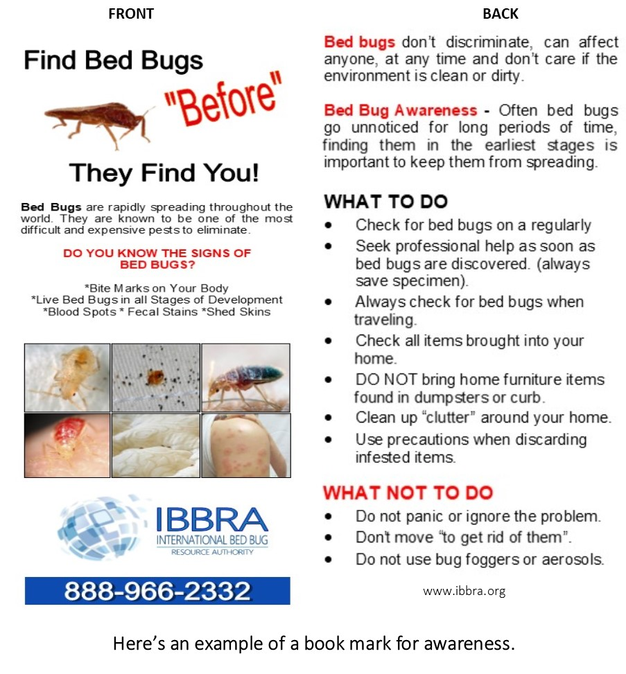 Learn About Bed Bugs In Libraries And Thrift Stores Ibbra