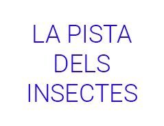 La Pista Dels Insectes