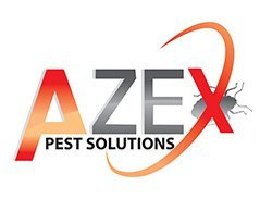 azex-1