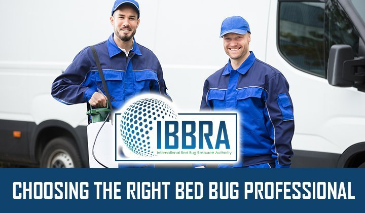 Choosing the Right Bed Bug Professional
