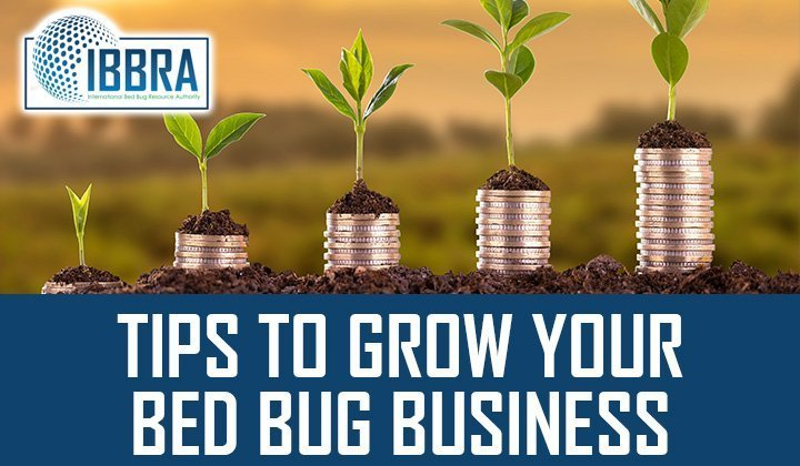 Tips To Grow Your Bed Bug Business