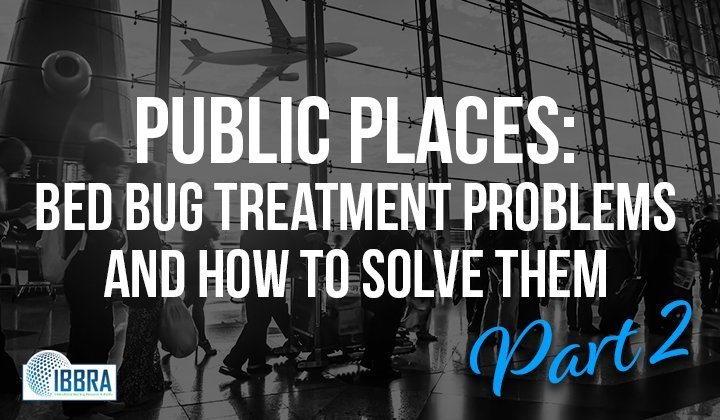 Public Places: Bed Bug Treatment Problems and How to Solve Them – Part 2